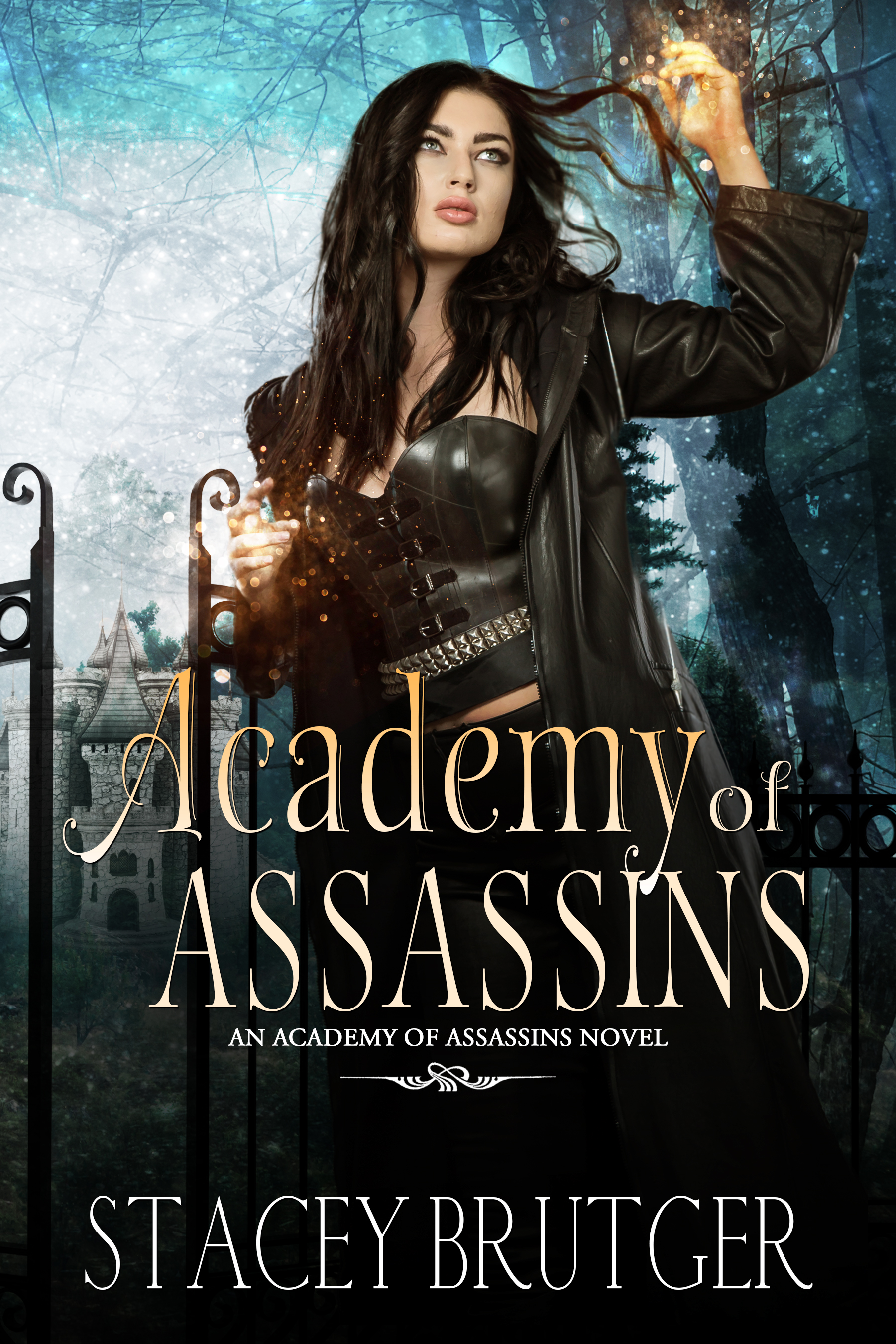 Academy of Assassins