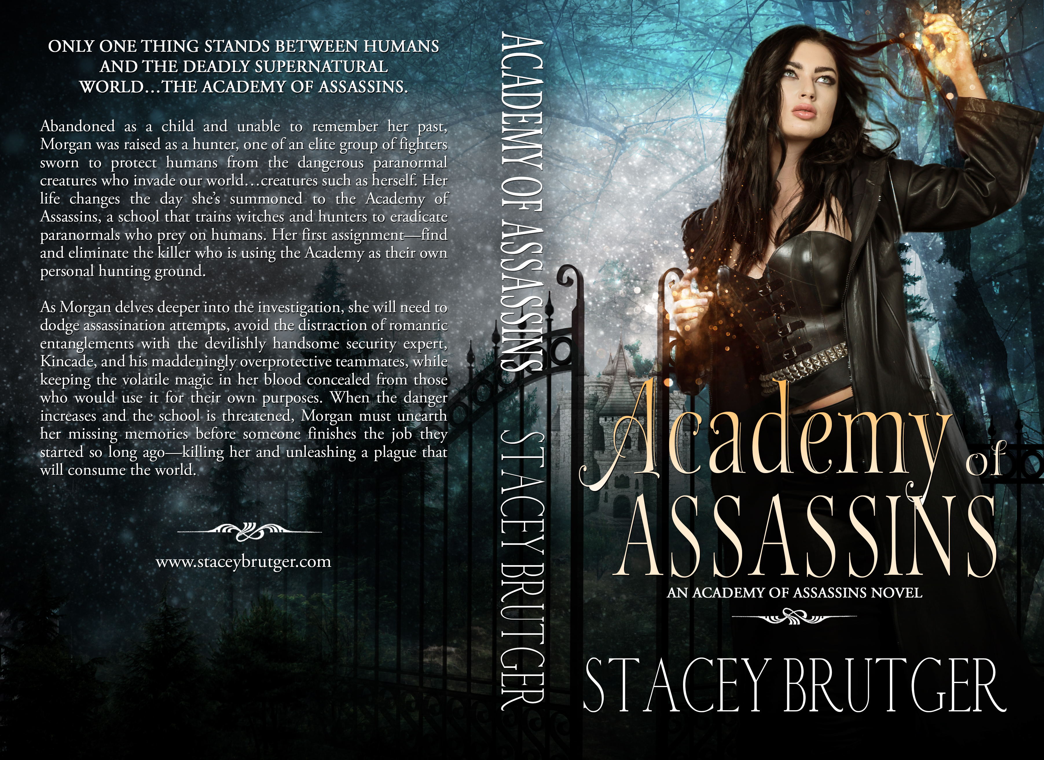 Academy of Assassins Print Cover by Stacey Brutger